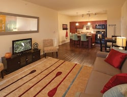 springs-apartments-living-top-questions-250