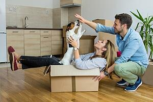Stress-Free Moving with a Pet in San Antonio