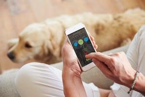 Digital-Apps-Pet-Owners.jpg