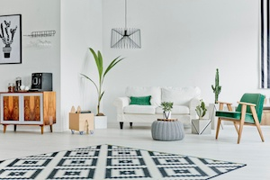 Home Decor Finds for Less Than $25