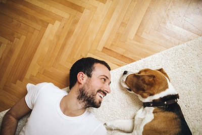 Keep_Your_Dog_Happy.jpg