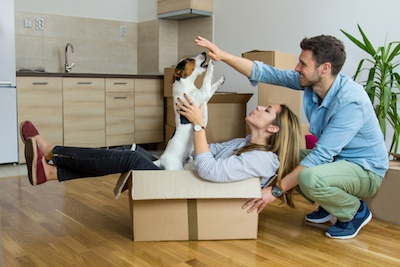 Moving With a Pet in San Antonio? 7 Tips for a Stress-Free Transition