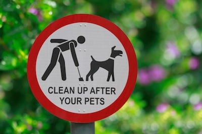 pet-waste-management